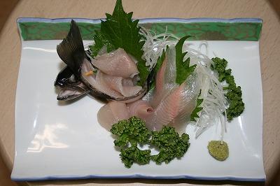 岩魚の刺身釣り