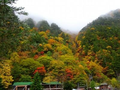 深山荘紅葉